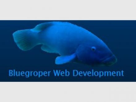 Bluegroper Web Development