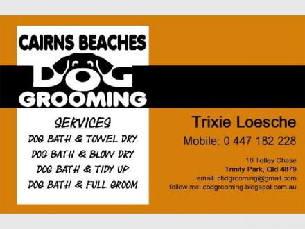 Cairns Beaches Dog Grooming