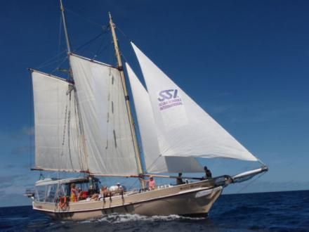 New Horizon Sail and Dive Adentures