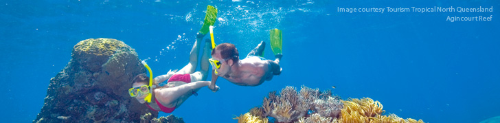 Scuba Diving & Snorkelling - Great Barrier Reef