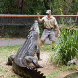 Hartley's Creek Crocodile Farm